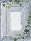 White Plaster Frame with Ivy Photographic Print by Green Light Collection