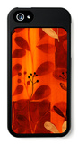 Sun Kissed Silhouette IV iPhone 5 Case by  Vision Studio