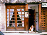 Entrance Paris France Photographic Print by Green Light Collection