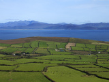 Pastoral Countyside Near Bulls Head Overlooking Dingle Bay And the Distant Ring of Kerry Photographic Print by Green Light Collection