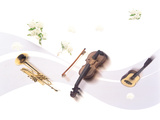 Musical Instruments And Flowers Photographic Print by Green Light Collection