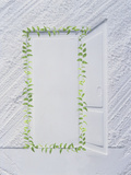 White Plaster Frame with An Open Door Etched in Center Surrounded with Green Vine Photographic Print by Green Light Collection