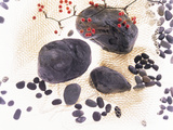 Pebbles And Berry on Net Photographic Print by Green Light Collection