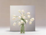 Bouquet of White Tulips in Clear Horizontal Vase in Front of Silver Horizontal on White Table Top Photographic Print by Green Light Collection