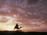 Silhouette Egypt Photographic Print by Green Light Collection
