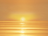 Golden Sunset Over Water Photographic Print by Green Light Collection
