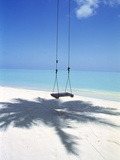 Swing on the Beach Above Palm Tree Shadow Fotografisk tryk af Green Light Collection