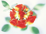 Bunch of Flowers Photographic Print by Green Light Collection