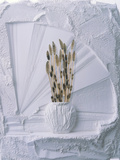 White Plaster Decorative Ledge with White Plaster Vase Holding Cattails Photographic Print by Green Light Collection