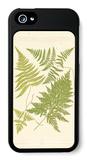 Ferns with Platemark VI iPhone 5 Case