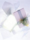 Gift Box Packing Photographic Print by Green Light Collection