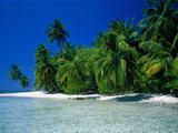 Beach Scene the Maldives Reproduction photographique par Green Light Collection