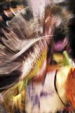 Indian Warrior Dancing Photographic Print by Dee Smart