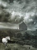 White Horse, Ireland Photographic Print by Dee Smart