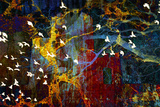 Abstract And Birds Photographic Print by Dee Smart
