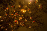 The Bright Lights Photographic Print by Katarzyna Kuban