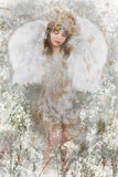 Winter Fairy Photographic Print by Dee Smart