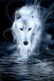Ghost Fotografisk tryk af Alexandra Stanek