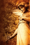 Old Sculpture Of An Angel Photographic Print by Ricardo Demurez