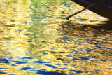 Golden Waters, Venice Photographic Print by Dee Smart