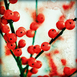 Ilex II Giclee Print by James Guilliam