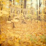 Autumn Love Giclee Print by Irene Suchocki