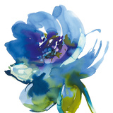 Blue Wash II Giclée-tryk af Sandra Jacobs
