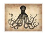Vintage Octopus Poster van  NaxArt