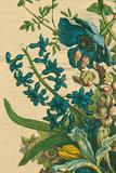 Furber Flowers I - Detail Giclée-Druck von Robert Furber
