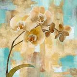 Sentosa I Giclee Print by Tania Bello