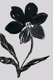 Fleur de Nuit II Giclee Print by Sandra Jacobs