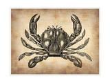 Vintage Crab Print by  NaxArt