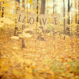 Autumn Love Poster by Irene Suchocki