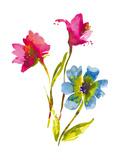 Flower Garden I Giclee Print by Sandra Jacobs