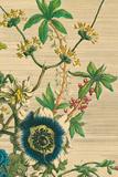 Furber Flowers II - Detail Giclee Print by Robert Furber