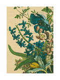 Furber Flowers I - Detail Kunstdrucke von Robert Furber