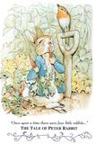 Beatrix Potter Tale Peter Rabbit POSTER cute Znaki plastikowe