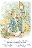 Beatrix Potter Tale Peter Rabbit POSTER cute Plastic Sign