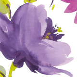 Violet Flower I Giclee Print by Sandra Jacobs