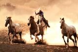 Cowboy roping Horses western Photo