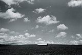 Big Sky Giclee Print by Andrew Geiger