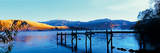 Lake Hayes Jetty Giclee Print by Nathan Secker