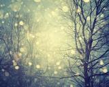 Winter Glow Giclee Print by Irene Suchocki
