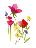 Flower Garden II Giclee Print by Sandra Jacobs