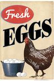 Fresh Eggs Chicken Hen Posters