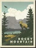 Parque Nacional das Montanhas Rochosas nos EUA Impressão em tela esticada por  Anderson Design Group