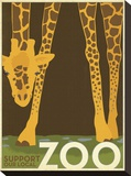Zoo Giraffe Stretched Canvas Print by  Anderson Design Group
