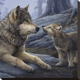 Brother Wolf (detail) Stretched Canvas Print by Daniel Smith