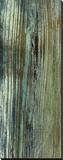 Boardwalk VII Stretched Canvas Print by Grant Louwagie