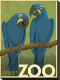 Zoo Parrots Stretched Canvas Print by  Anderson Design Group